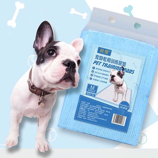 Dog Potty Pads & Diapers