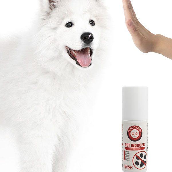 Dog Training Spray