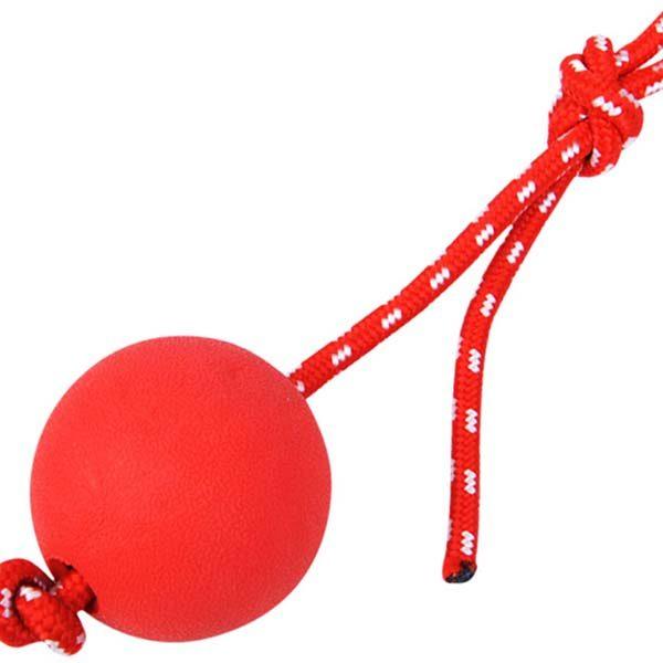Dog Ball Toys Exporter