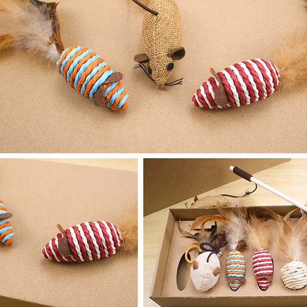 Feather Wand Toys