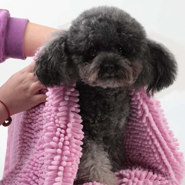 Purchase Pet Towels